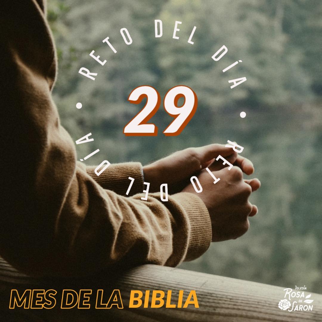 RETO 29