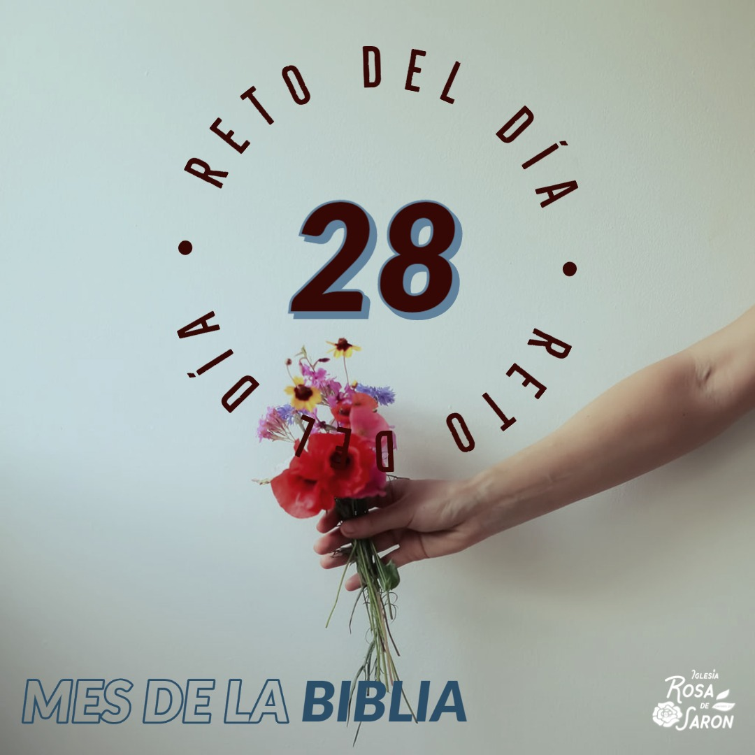 RETO 28